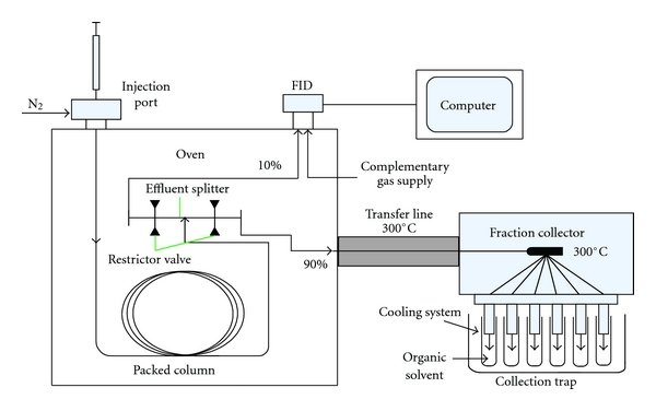 Preparative gas chromatography system equipped with packed