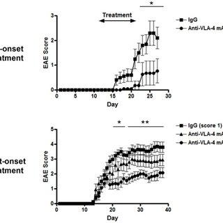 (A) Up-regulation of CD11b on CNS-infiltrated CD45+ cells