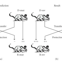Loss-of-presentation mutagenesis of antigenic peptides