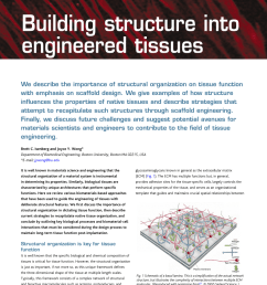 pdf building structure into engineered tissues [ 850 x 1100 Pixel ]