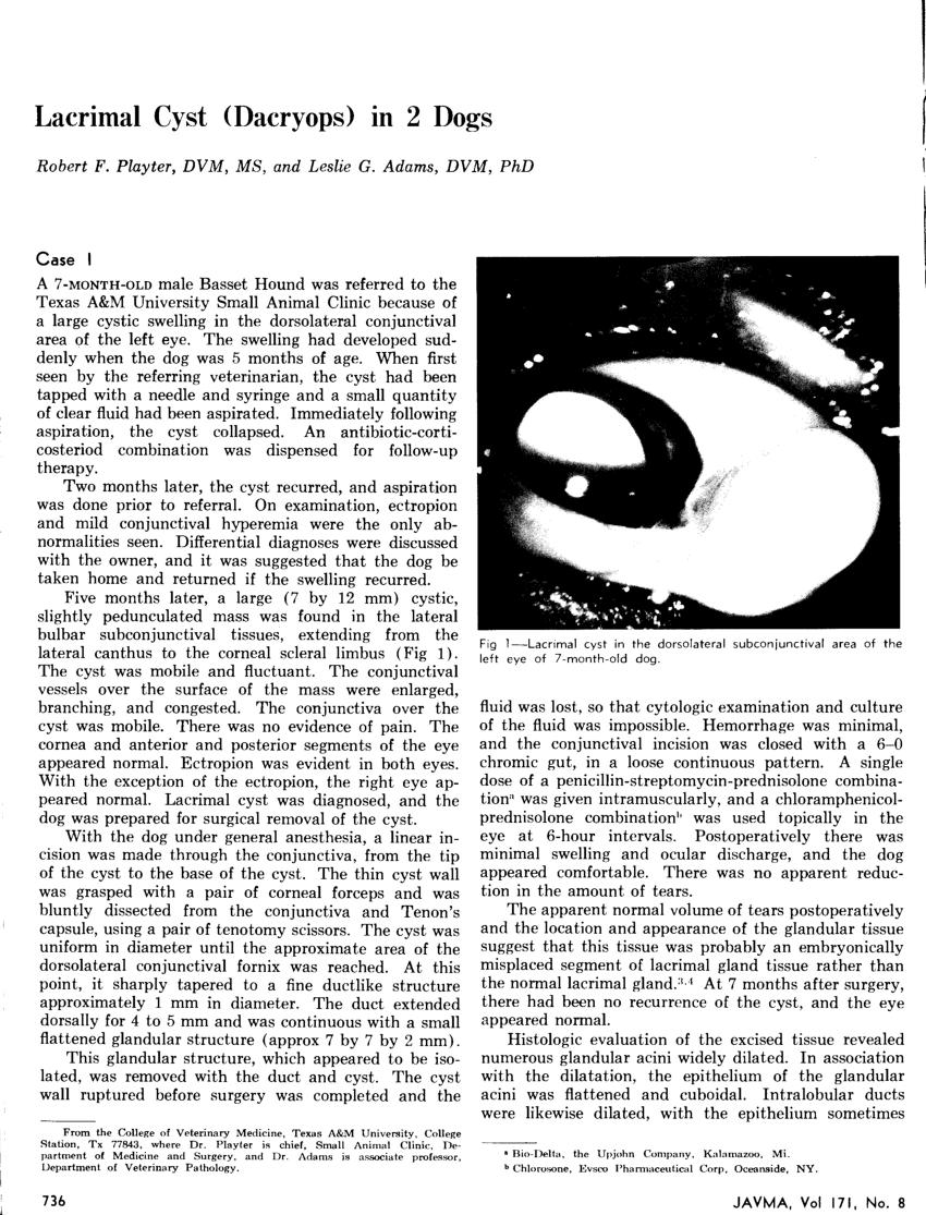 (PDF) Lacrimal Cyst (Dacryops) in 2 Dogs