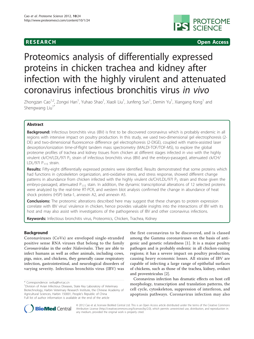 PDF) Proteomics analysis of differentially expressed proteins in ...