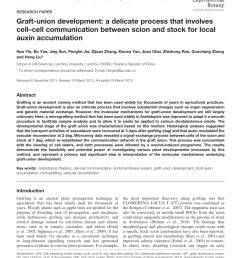 pdf graft union development a delicate process that involves cell cell communication between scion and stock for local auxin accumulation [ 850 x 1098 Pixel ]