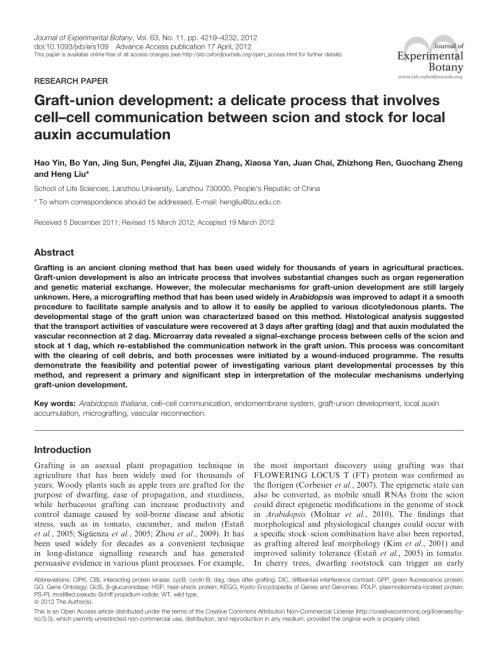 small resolution of  pdf graft union development a delicate process that involves cell cell communication between scion and stock for local auxin accumulation