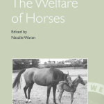 Pdf Training Methods And Horse Welfare