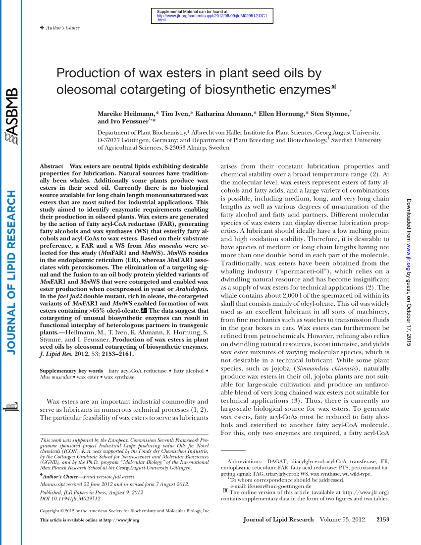 hight resolution of localization of mcherry tagged mm far1 in onion epidermal cells a download scientific diagram