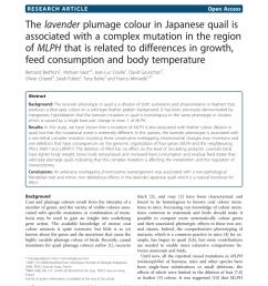 japanese quail homozygous for the silver mutation b white quail download scientific diagram [ 850 x 1133 Pixel ]