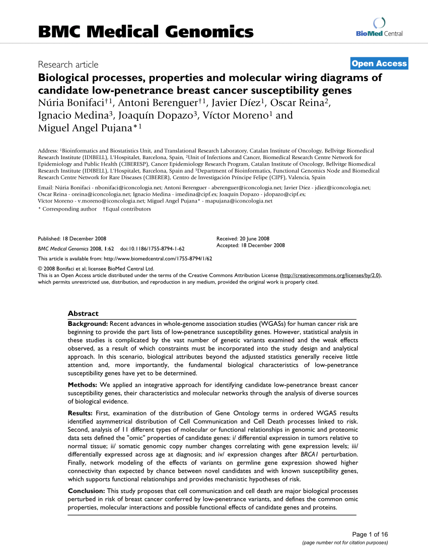 medium resolution of  pdf biological processes properties and molecular wiring diagrams of candidate low penetrance breast cancer susceptibility genes
