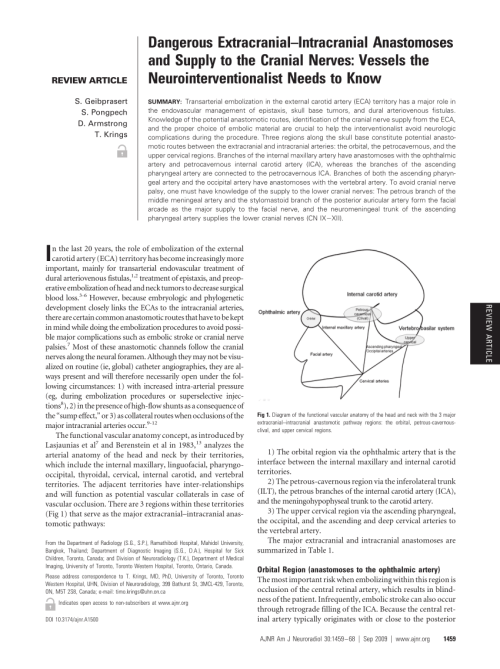 small resolution of diagram of the functional vascular anatomy of the head and neck with download scientific diagram