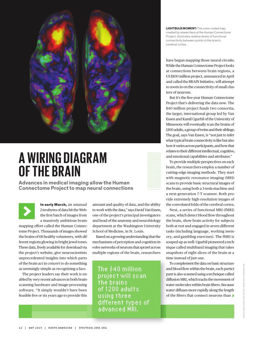 medium resolution of  pdf a wiring diagram of the brain news