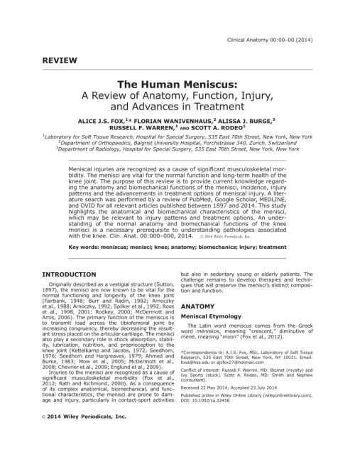 small resolution of  pdf the human meniscus a review of anatomy function injury and advances in treatment the meniscus anatomy function injury and treatment
