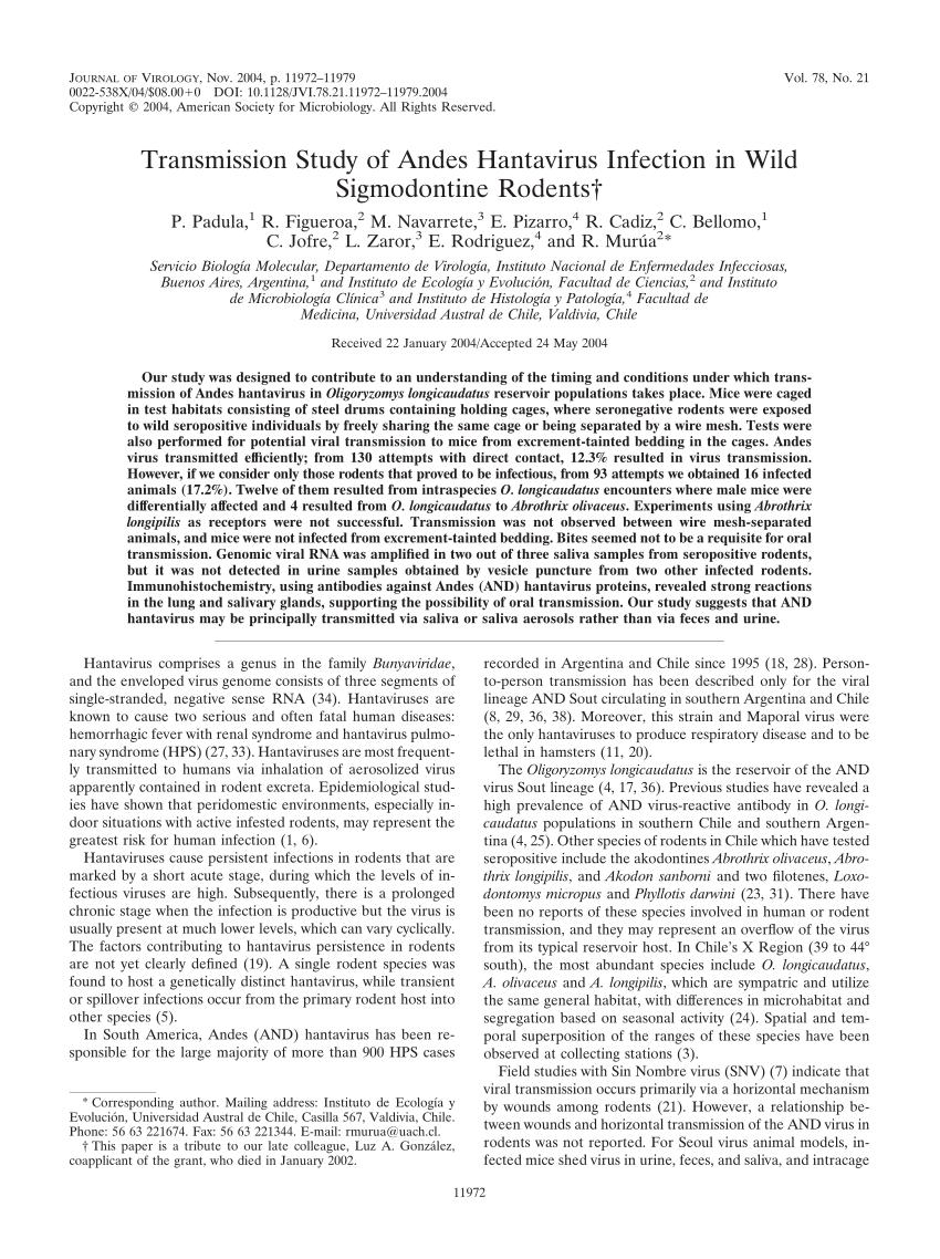 Molecular Biology of Hantaviruses