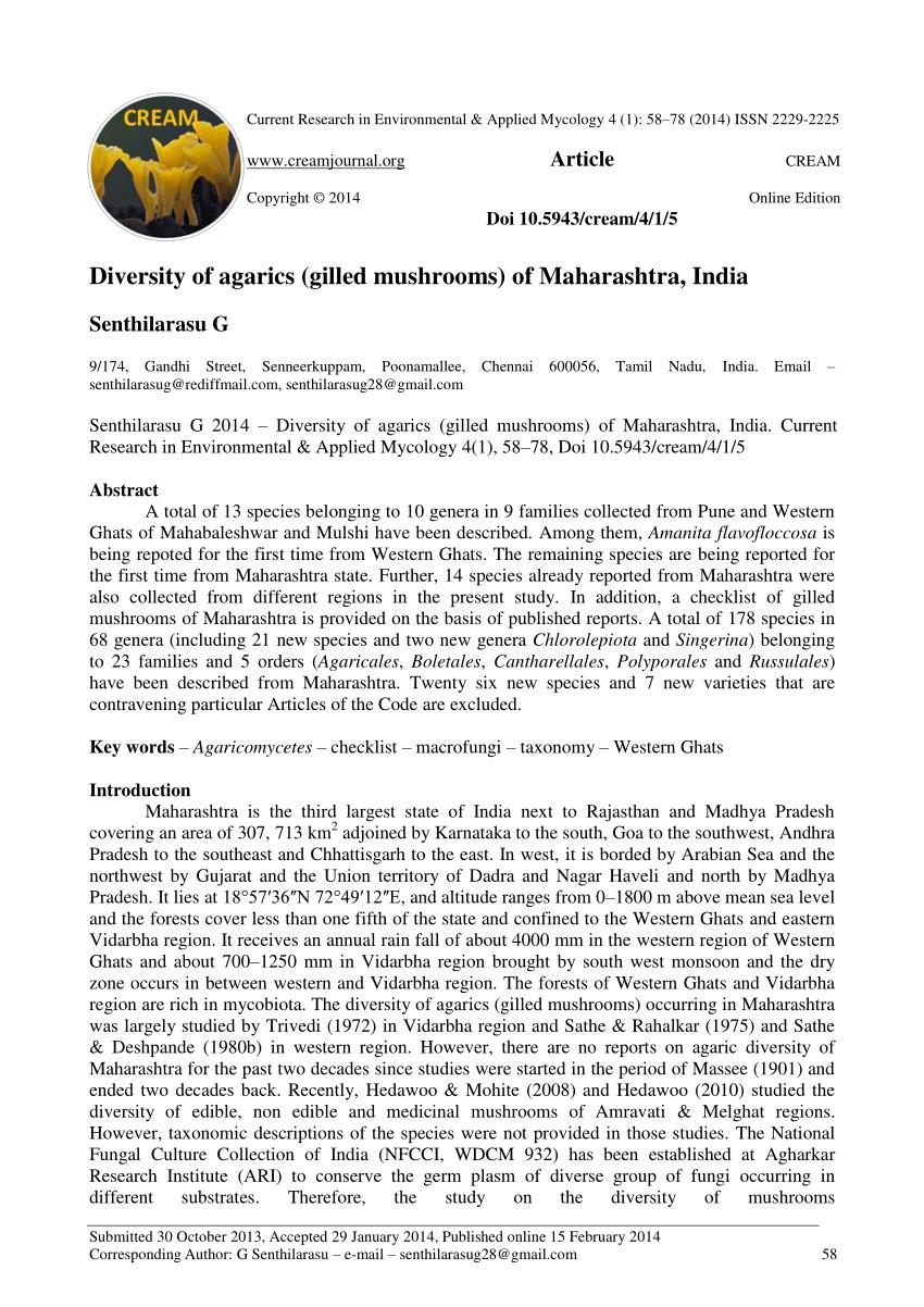 PDF Diversity of agarics gilled mushrooms of