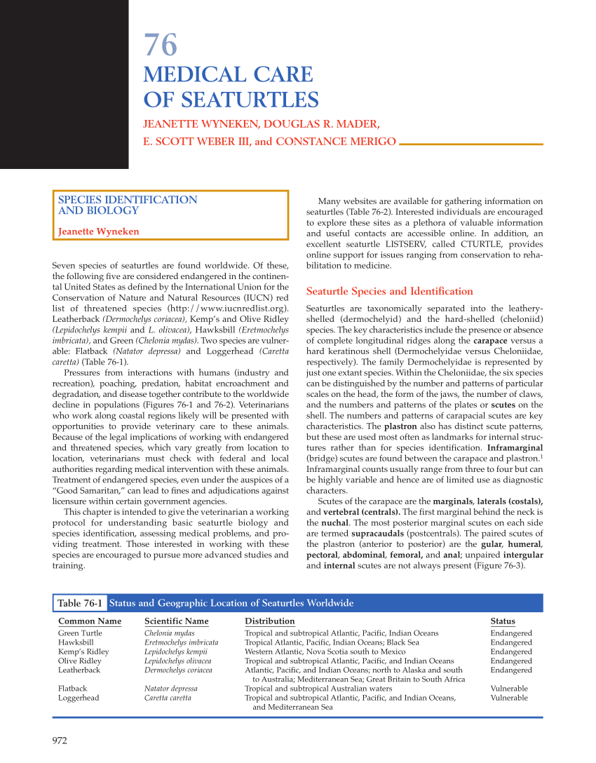 (Pdf) Rehabilitation Of Seaturtles: Protocol For Management Of Cold-Stunning