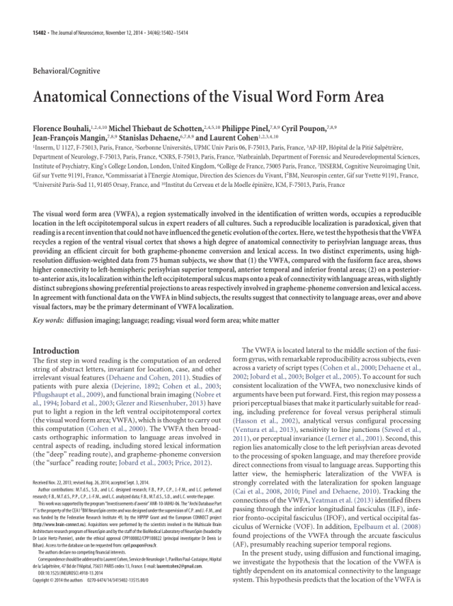 PDF) Anatomical Connections of the Visual Word Form Area