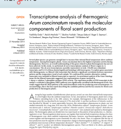 pdf transcriptome analysis of thermogenic arum concinnatum reveals the molecular components of floral scent production [ 850 x 1118 Pixel ]