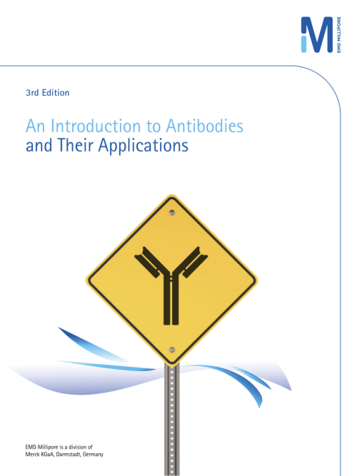 small resolution of  pdf an introduction to antibodies and their applications