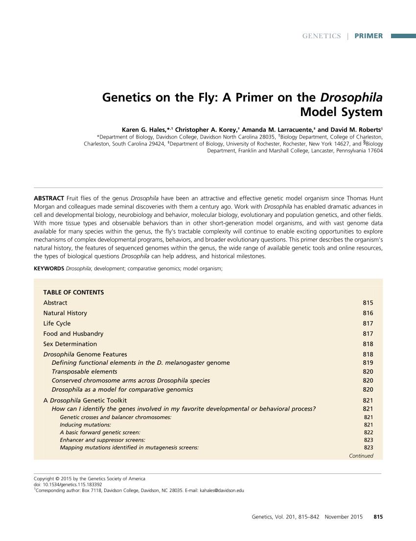 hight resolution of  pdf the fruit fly drosophila melanogaster the making of a model part i