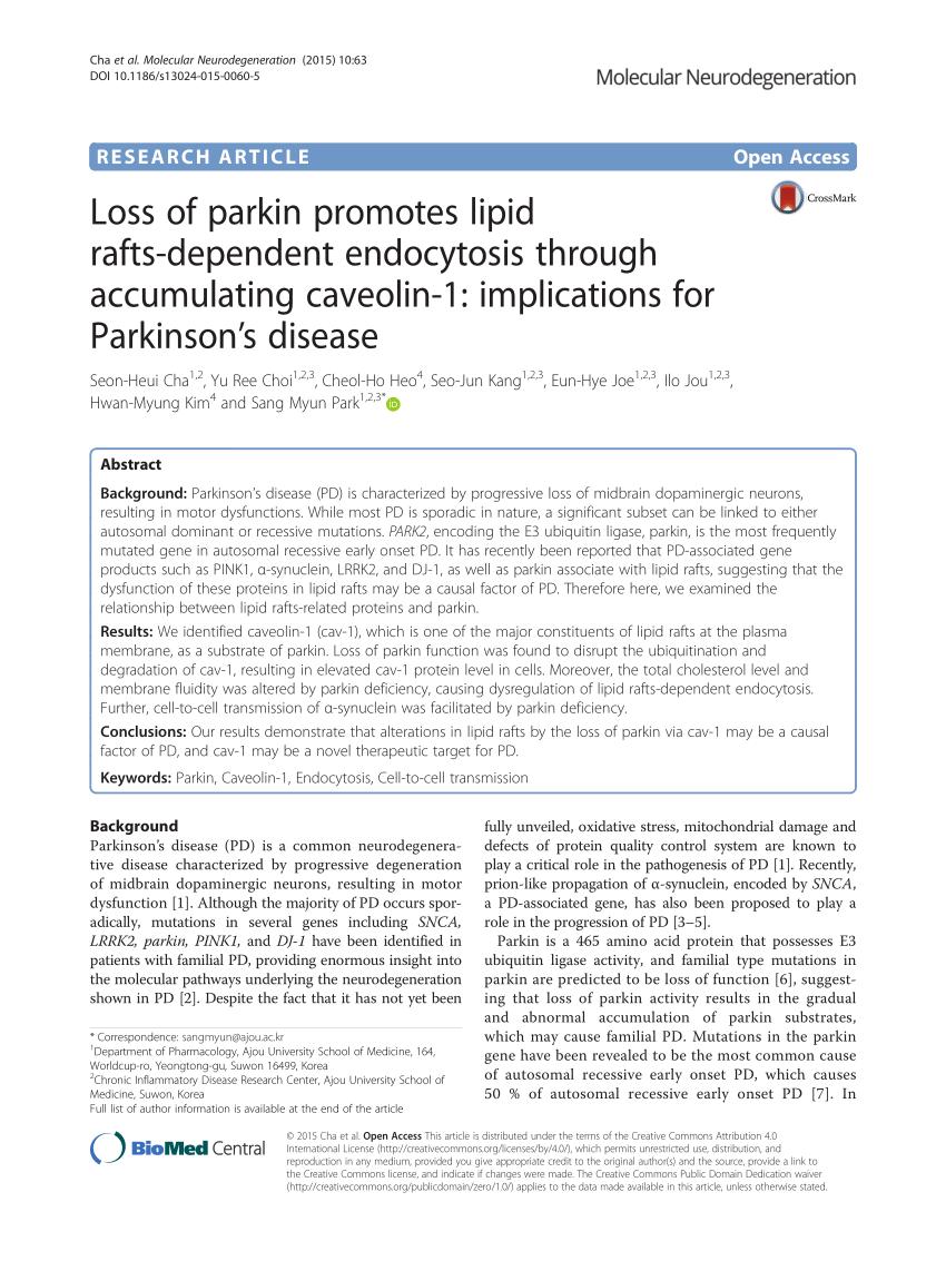 medium resolution of  pdf leucine rich repeat kinase 2 associates with lipid rafts