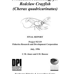 selection for increased weight at 9 months in redclaw crayfish cherax quadricarinatus cameron p mcphee request pdf [ 850 x 1203 Pixel ]