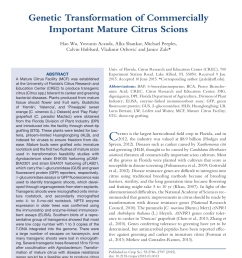 pdf genetic transformation of commercially important mature citrus scions [ 850 x 1134 Pixel ]