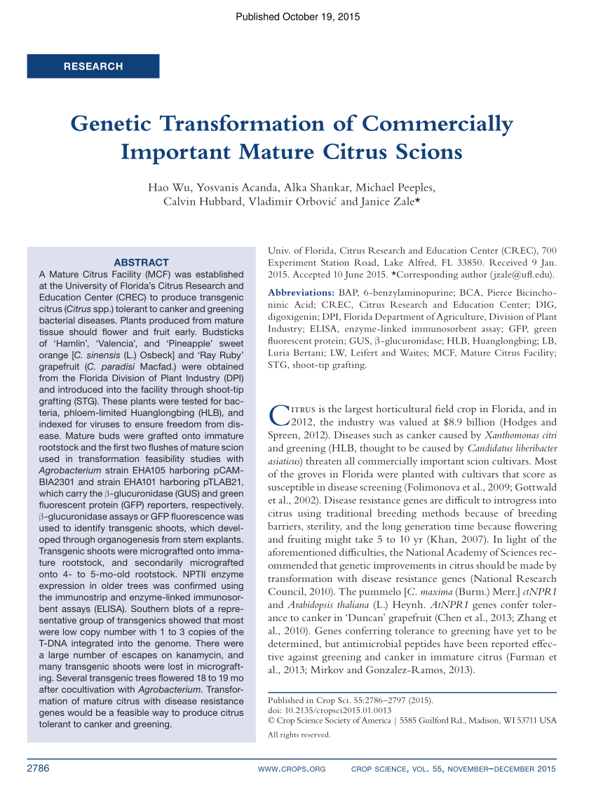 hight resolution of  pdf genetic transformation of commercially important mature citrus scions