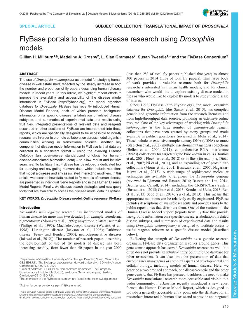 medium resolution of  pdf the fruit fly drosophila melanogaster the making of a model part i