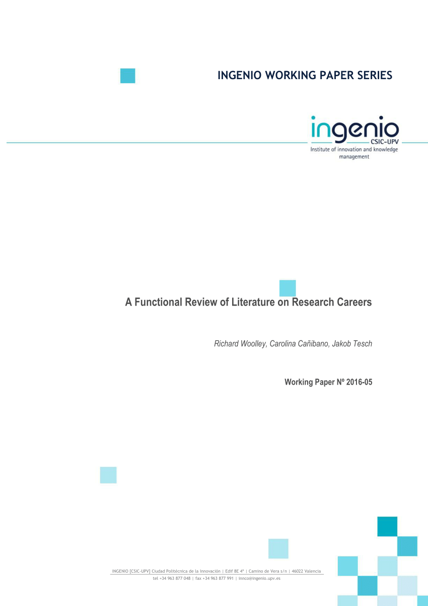 (PDF) A Functional Review of Literature on Research Careers