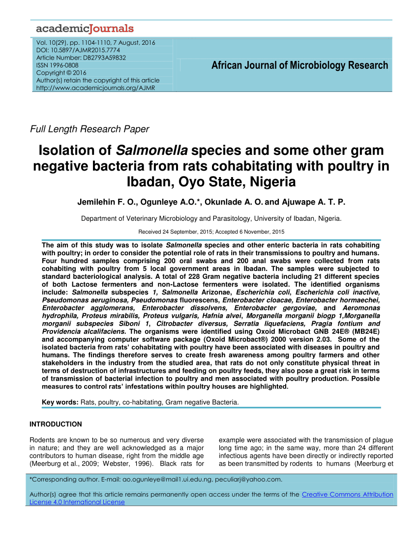 PDF Isolation Of Salmonella Species And Some Other Gram Negative