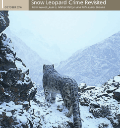 pdf what is a snow leopard taxonomy morphology and phylogeny [ 850 x 1202 Pixel ]