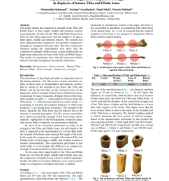 pdf experimental investigation of compressive strength in diaphysis of human tibia and fibula bones [ 850 x 1203 Pixel ]