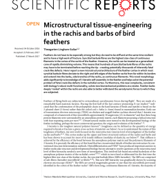 pdf microstructural tissue engineering in the rachis and barbs of bird feathers [ 850 x 1118 Pixel ]