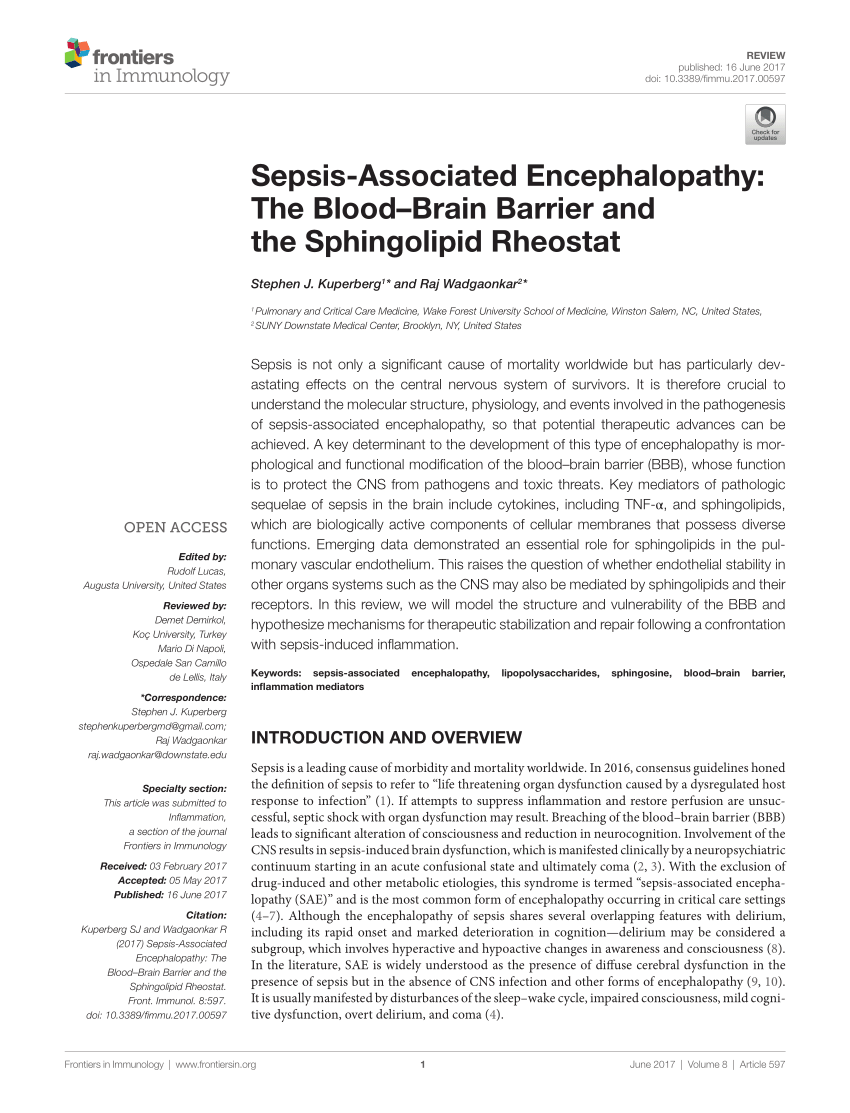 medium resolution of  pdf sepsis associated encephalopathy the blood brain barrier and the sphingolipid rheostat