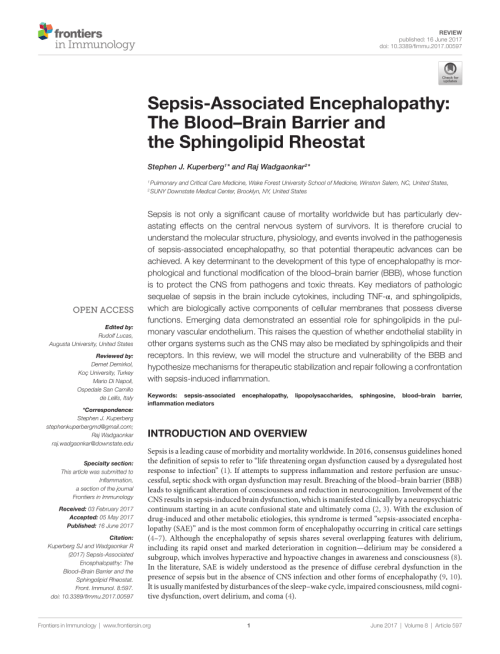 small resolution of  pdf sepsis associated encephalopathy the blood brain barrier and the sphingolipid rheostat