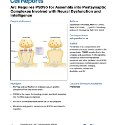 pdf arc requires psd95 for assembly into postsynaptic complexes involved with neural dysfunction and intelligence [ 850 x 1105 Pixel ]