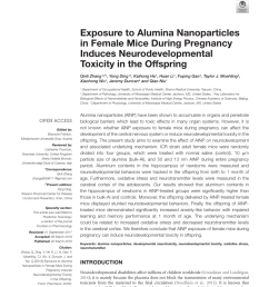 pdf toxicity of nanoparticles [ 850 x 1113 Pixel ]