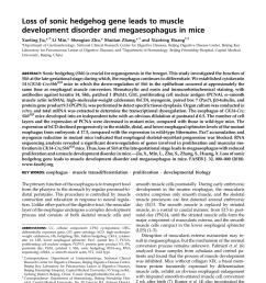 cdo mice have megaesophagus and display defective download scientific diagram [ 850 x 1121 Pixel ]