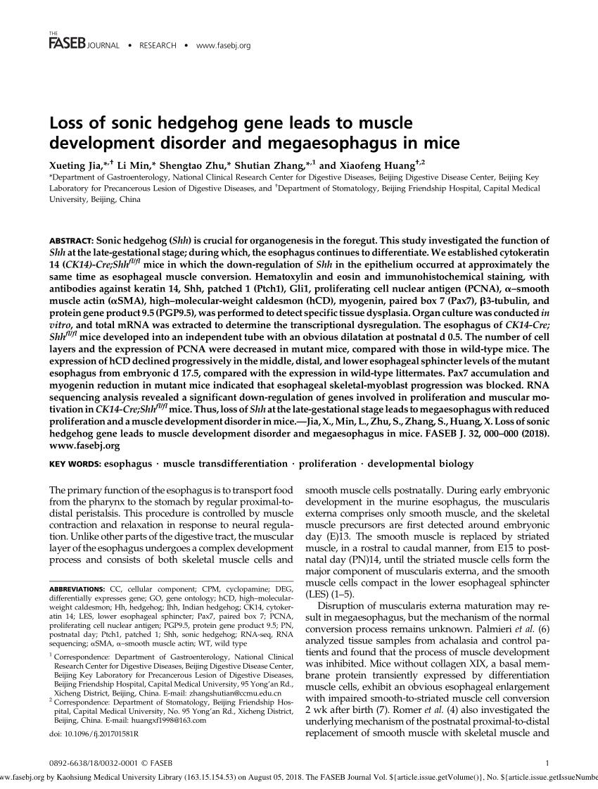medium resolution of cdo mice have megaesophagus and display defective download scientific diagram