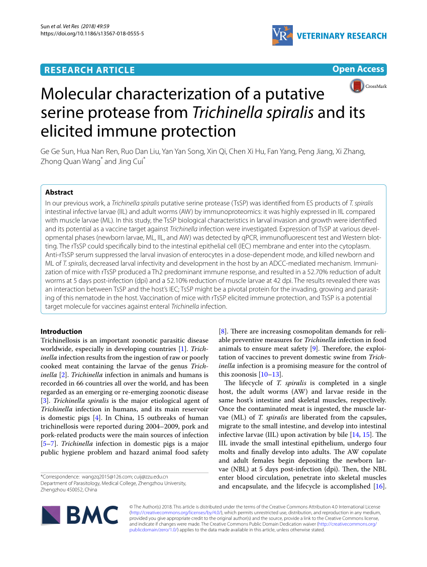 medium resolution of trichinella spiralis newborn larvae characterization of a stage specific serine proteinase expression nbl1 using monoclonal antibodies request pdf