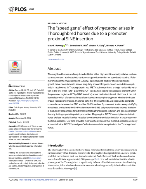 small resolution of  pdf organization of the human myostatin gene and expression in healthy men and hiv infected men with muscle wasting