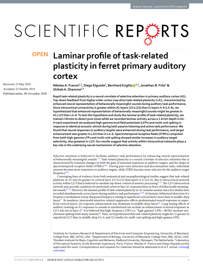 hight resolution of  pdf columnar connectivity and laminar processing in cat primary auditory cortex