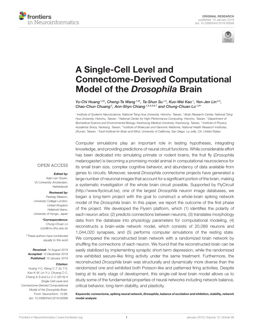 medium resolution of two types of wiring diagrams a schematic of mammalian retina drawn download scientific diagram