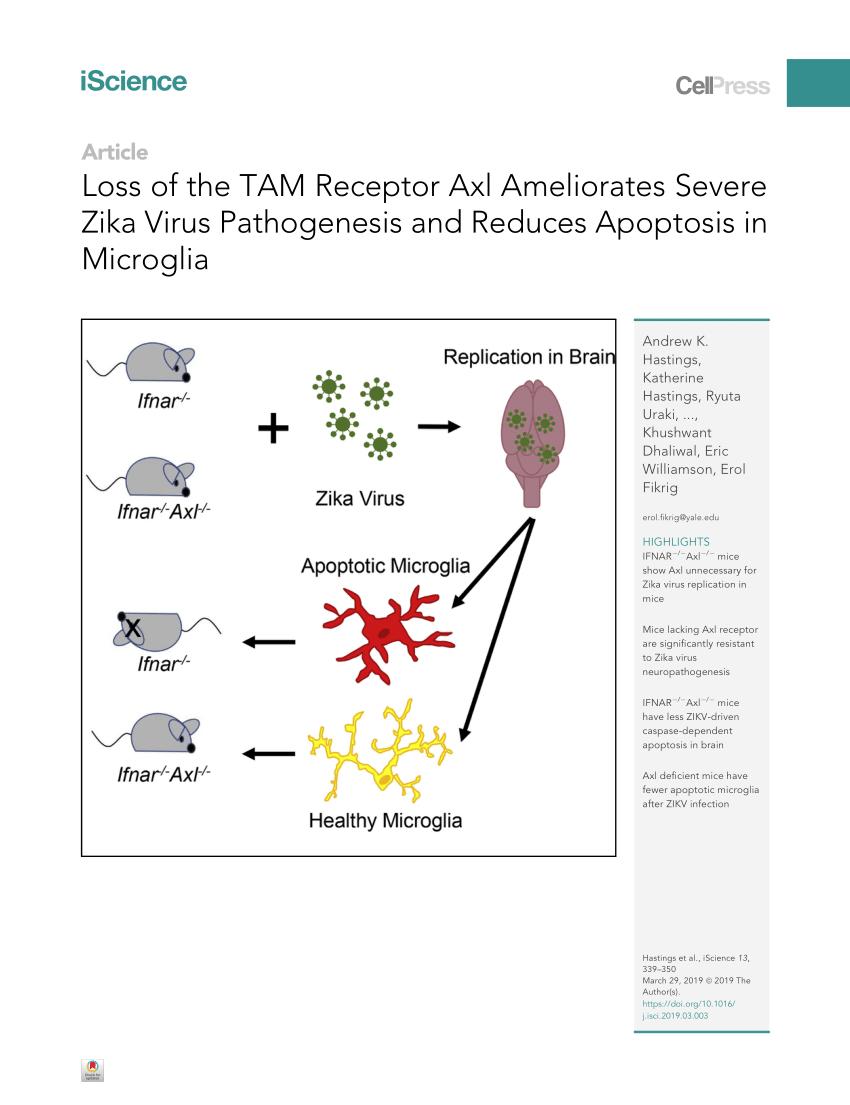 medium resolution of  pdf prostaglandin e 2 induces oncostatin m expression in human chronic wound macrophages through axl receptor tyrosine kinase pathway
