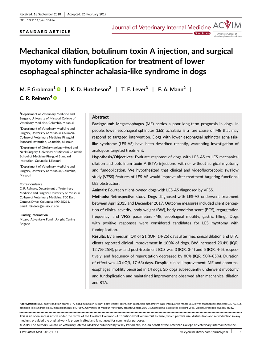 medium resolution of esophageal achalasia and secondary megaesophagus in a dog pedro a boria request pdf