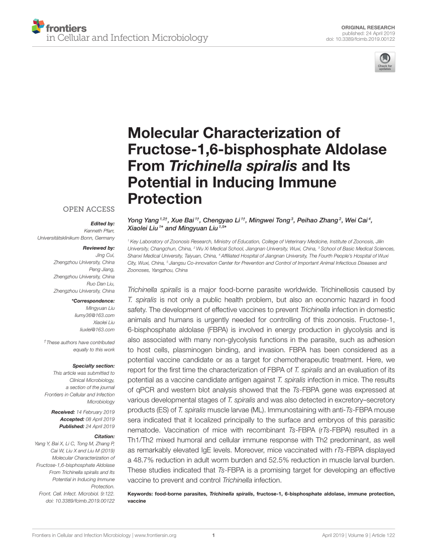 hight resolution of trichinella spiralis newborn larvae characterization of a stage specific serine proteinase expression nbl1 using monoclonal antibodies request pdf