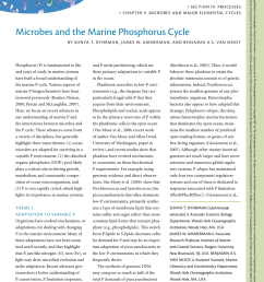 pdf microbes and the marine phosphorus cycle [ 850 x 1100 Pixel ]