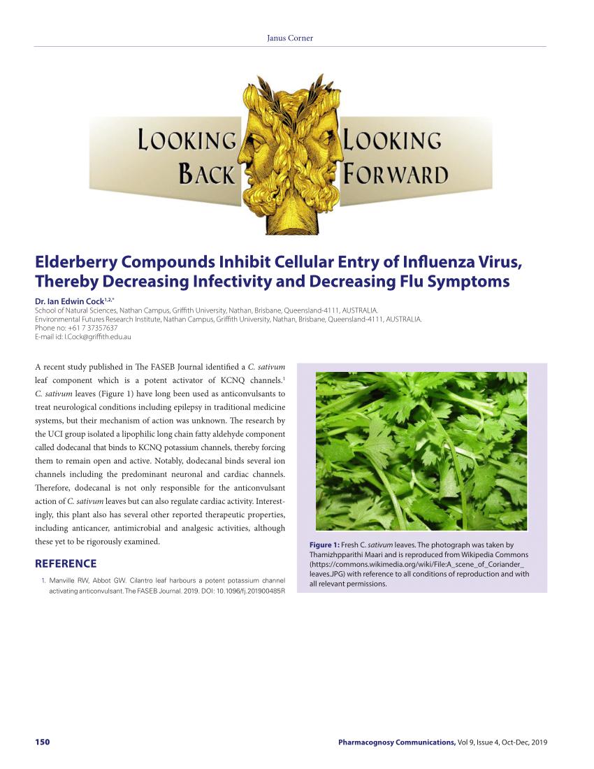 PDF) Elderberry Compounds Inhibit Cellular Entry of Influenza ...