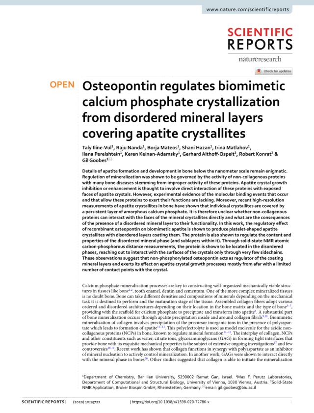 PDF) Osteopontin regulates biomimetic calcium phosphate