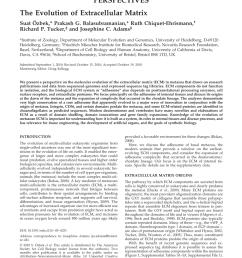 pdf the evolution of extracellular matrix [ 850 x 1121 Pixel ]