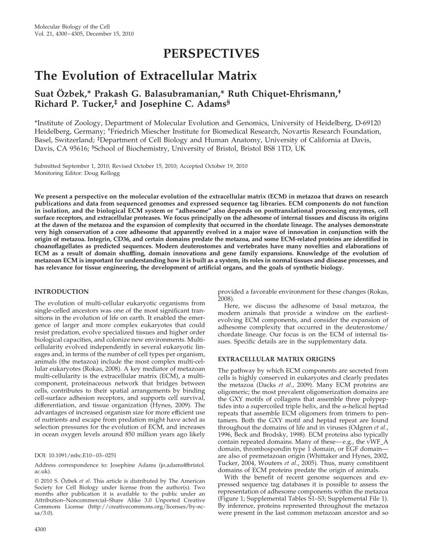 medium resolution of  pdf the evolution of extracellular matrix